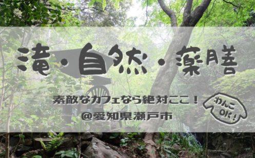 薬膳茶SoybeanFlour 滝カフェきらら アイキャッチ